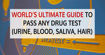 Things to Remember Before Having Your Blood Work Tested suffering from any health problems